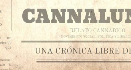 imag_canna